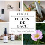 """Atelier """"A la découverte des fleurs de Bach, à la découverte de soi """" avec Davina Dudans"""